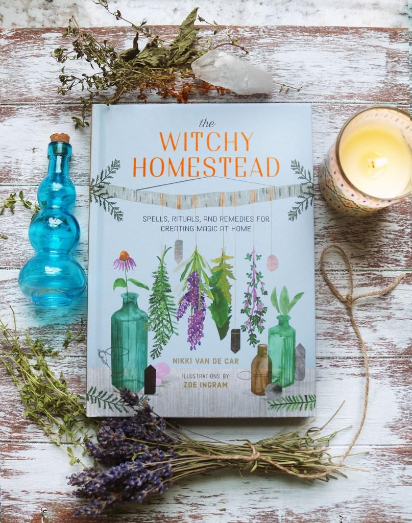 The WItchy Homestead by Nikki Van De Car
