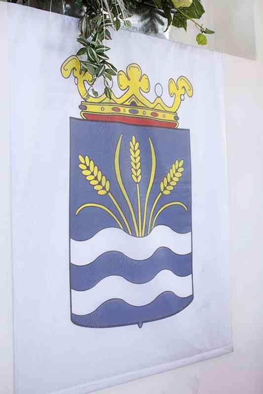 Gemeentewapen gemeente Haarlemmermeer