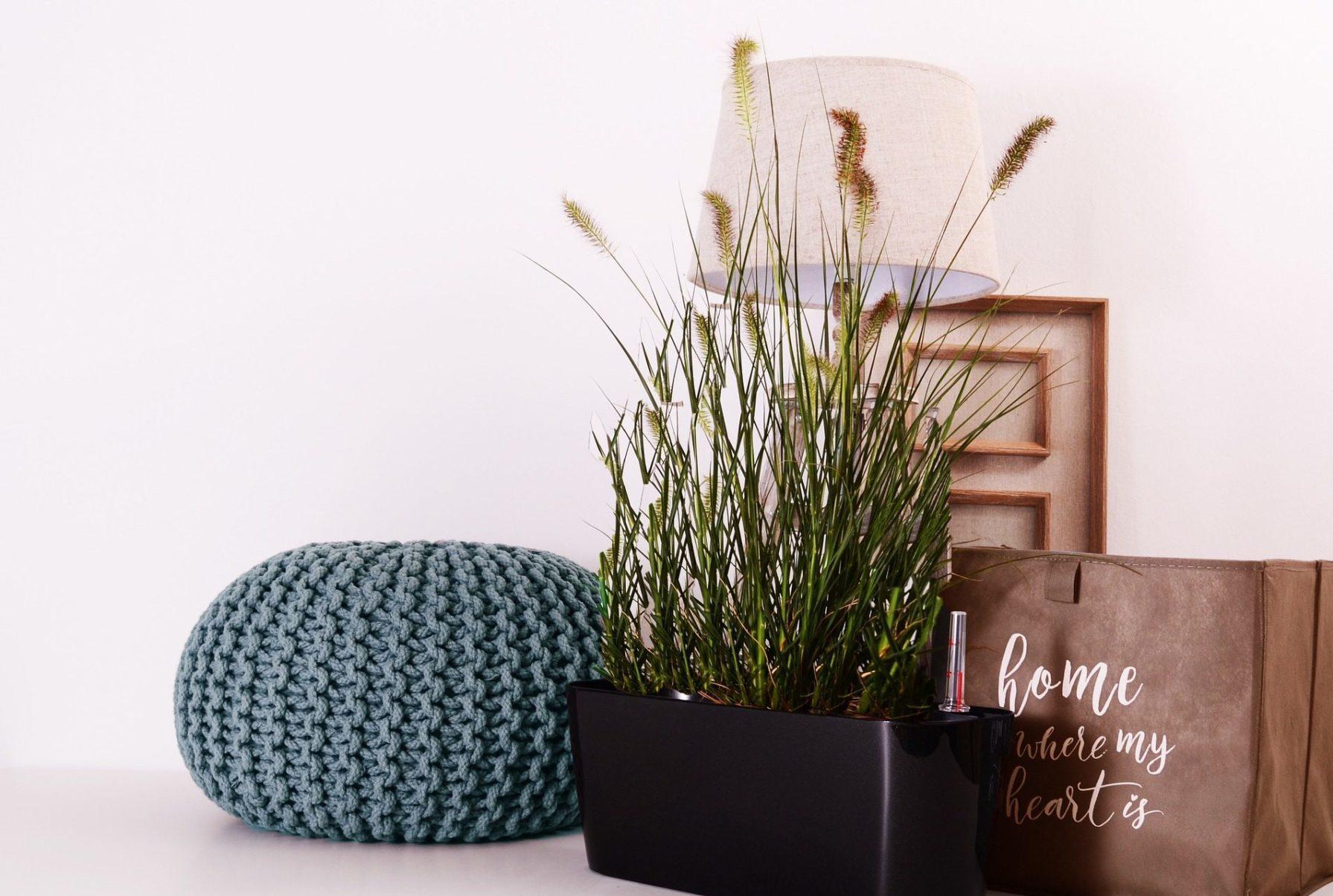 Plant en poef MooiHuis Styling