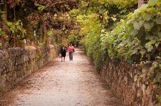 Camino Portugués bij Ponte de Lima