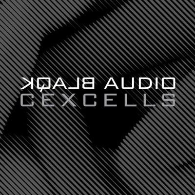 blaqk-audio-album-cover