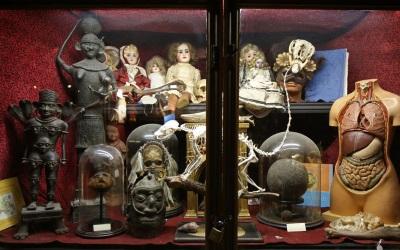 Viktor Wynd museum