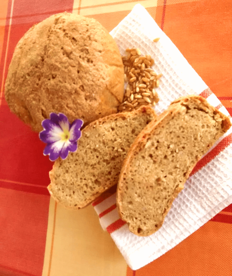 pelanos bread recipe
