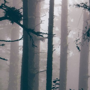 folk horror music playlist