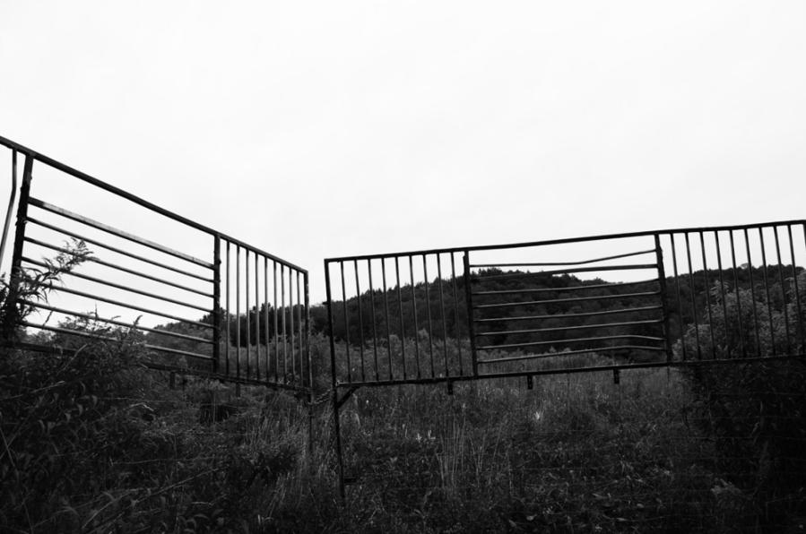 Joanna Valente photography
