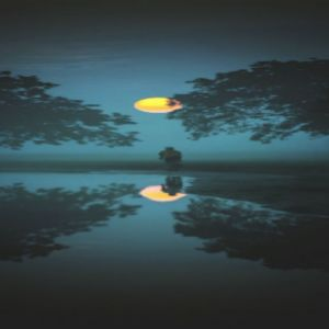 Poetry by Sarah Marquez : New Moon