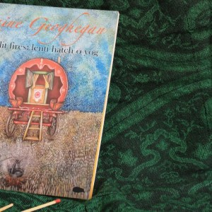Book Review: They Lit Fires: Lenti Hatch O Yog by Raine Geoghegan