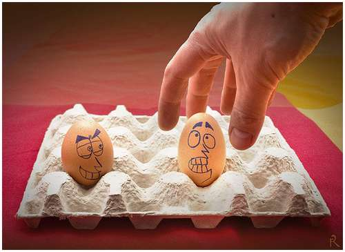 Funny-and-Clever-Egg-Photography-21