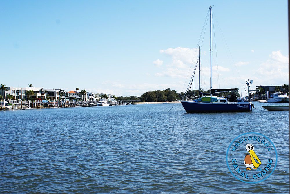 Views from the boat - Mooloolaba Canal Cruise