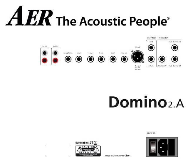 AER Domino 2 100 Watt Acoustic Instrument Amplifier
