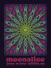 M298 › 7/18/10 Free Show In The Park, Willits, CA poster by Dave Hunter