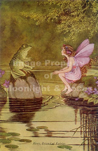 Fairy Exquisite Wall Art Large