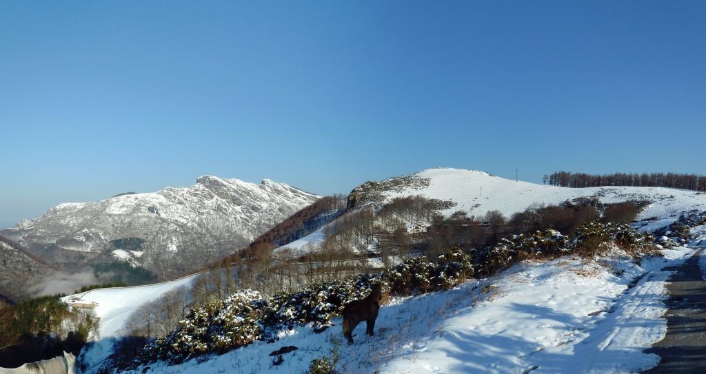 Negua, mendiak, Lizardi. El invierno, los montes, Lizardi.  Bianditz, foto de Xabier Berriozar