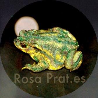 Sapo-luna de Rosa Prat