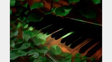 Nocturno sin Luna. Fotografía de Rafa Hierro. Poema de Txema Anguera. MoonMagazine.info