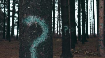 La pregunta dramática, elemento básico del planteamiento 6