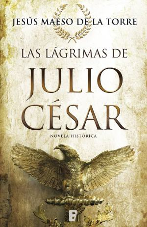 Día del Libro 2018. Dieciséis novelas recomendadas. Las lágrimas de Julio César.Jesús Maeso de la Torre