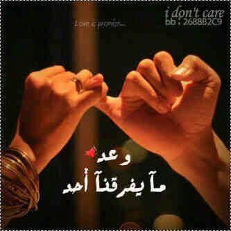 شات الحب افضل دردشة عربية غرف دردشة ممتعه