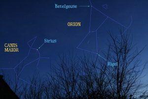 CanisMaior Sirius 300x200 Persiguiendo caninos en el cielo.