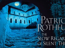 The Slow Regard of Silent Things Review
