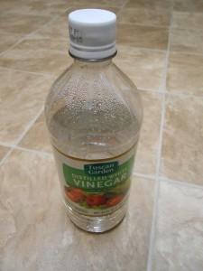 white vinegar bottle preserving pine cone