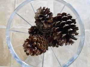 Decorate with Pine Cones Vase