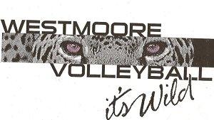 Athletics / Volleyball