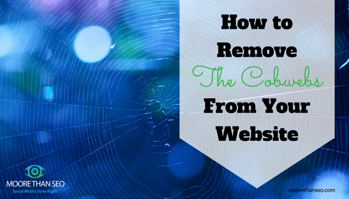 Shows cobweb with note on how to remove the cobwebs from your website