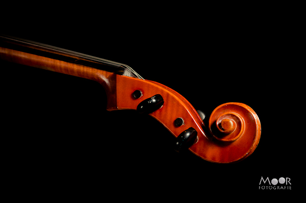 Cello Muziek Rogier