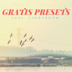 Gratis Lightroom Presets