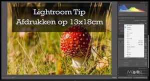 Lightroom Tip Afdrukken op 13x18cm