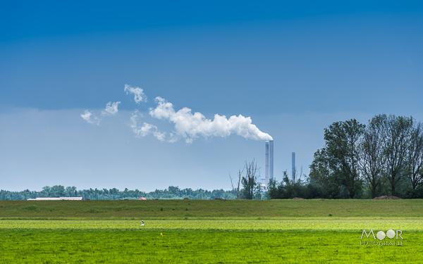 Woordloze Woensdag Biesbosch Werkendam Amercentrale Groen Blauw
