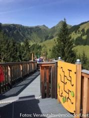 Ferienwoche_Donnerstag_Ausflug_Hochseilpark-6712