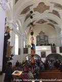Moosdorfer Palmbaum