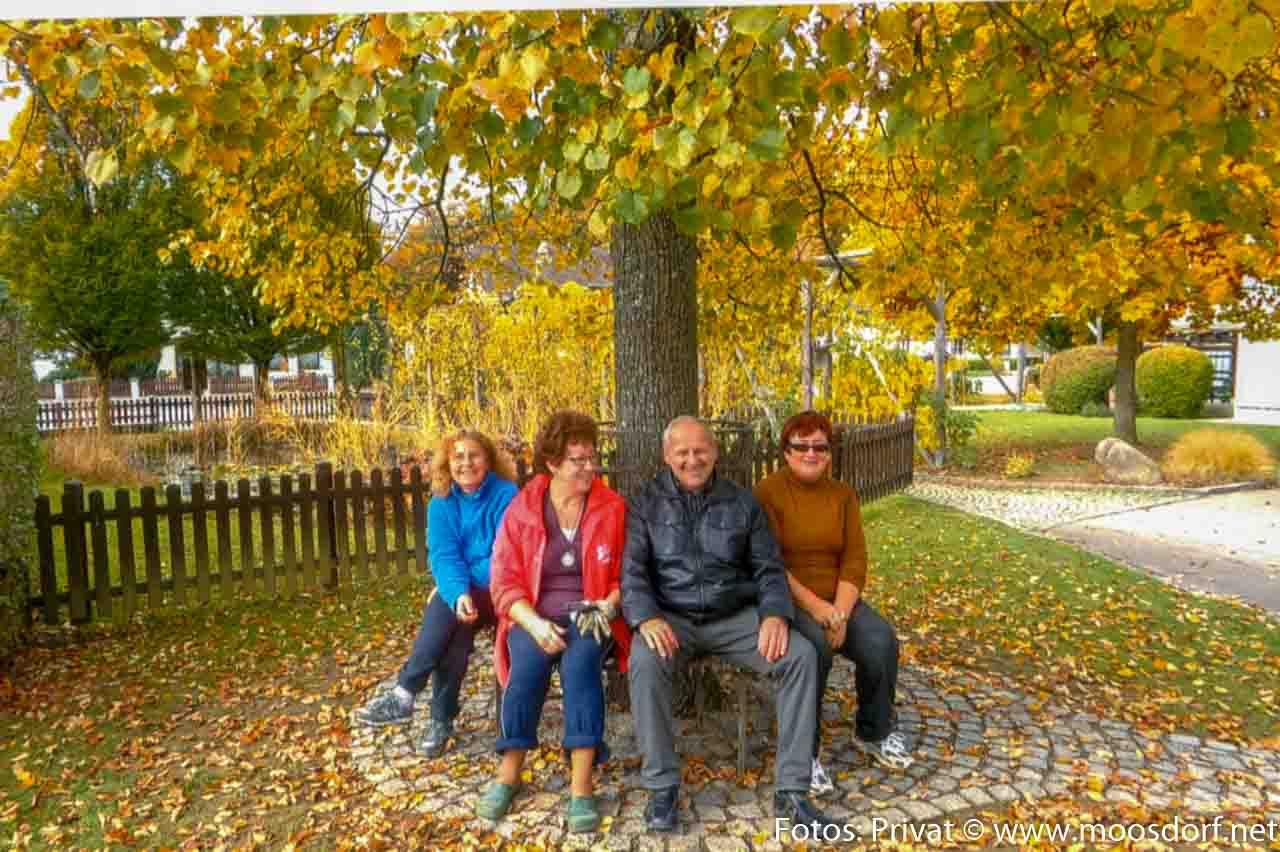 Schulgarten (4 von 4)