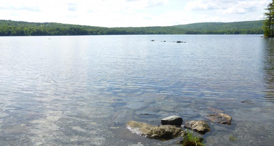 Loon Landing Clear Water Wilson Pond