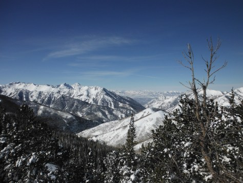 The Salt Lake Valley pictured from Big Cottonwood Canyon