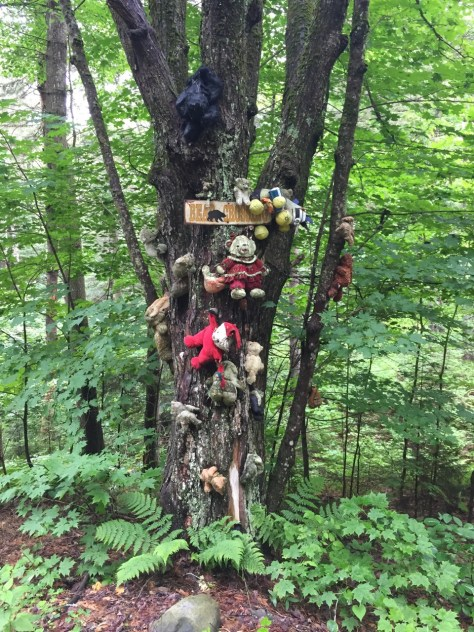 Some of the creepier things we find out in the woods.