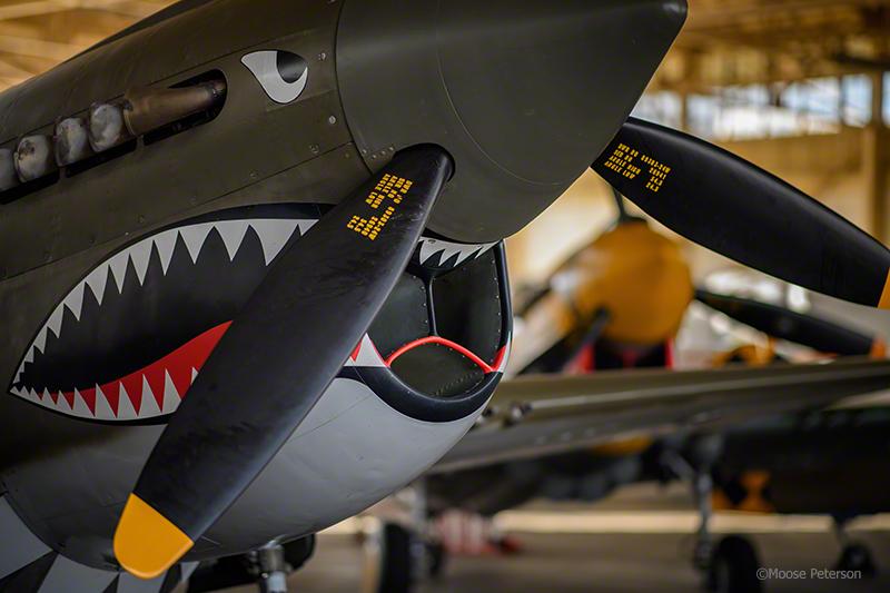 "TFLM P-40e ""Texas Warhawk"" captured by D5 / 105f1.4 AFS"