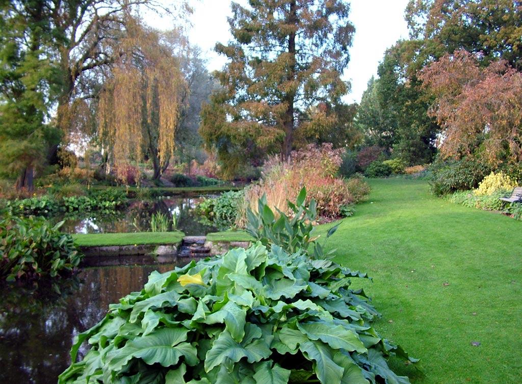 Beth Chatto Autumn Garden