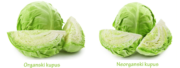 organski i neorganski kupus