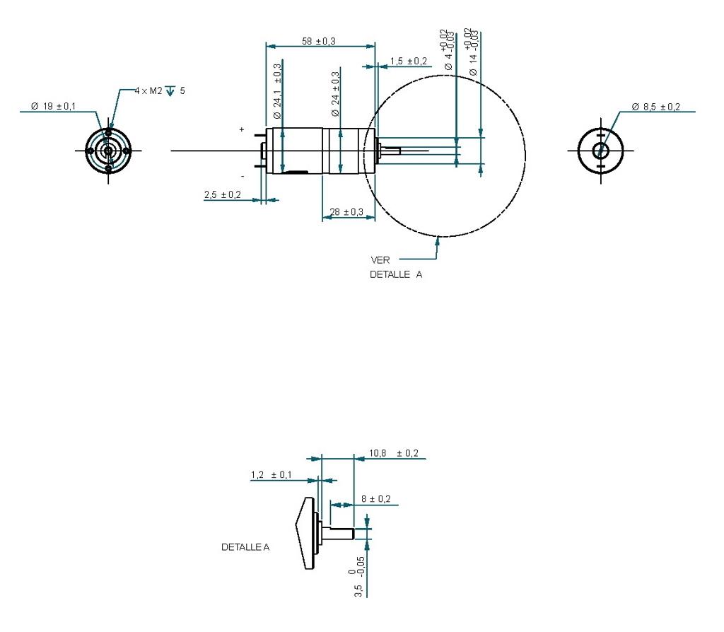 Motorreductor Dc 12v 150rpm Ref 12