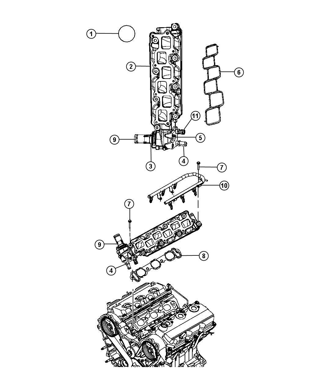 2010 Chrysler Town & Country Gasket. Intake manifold