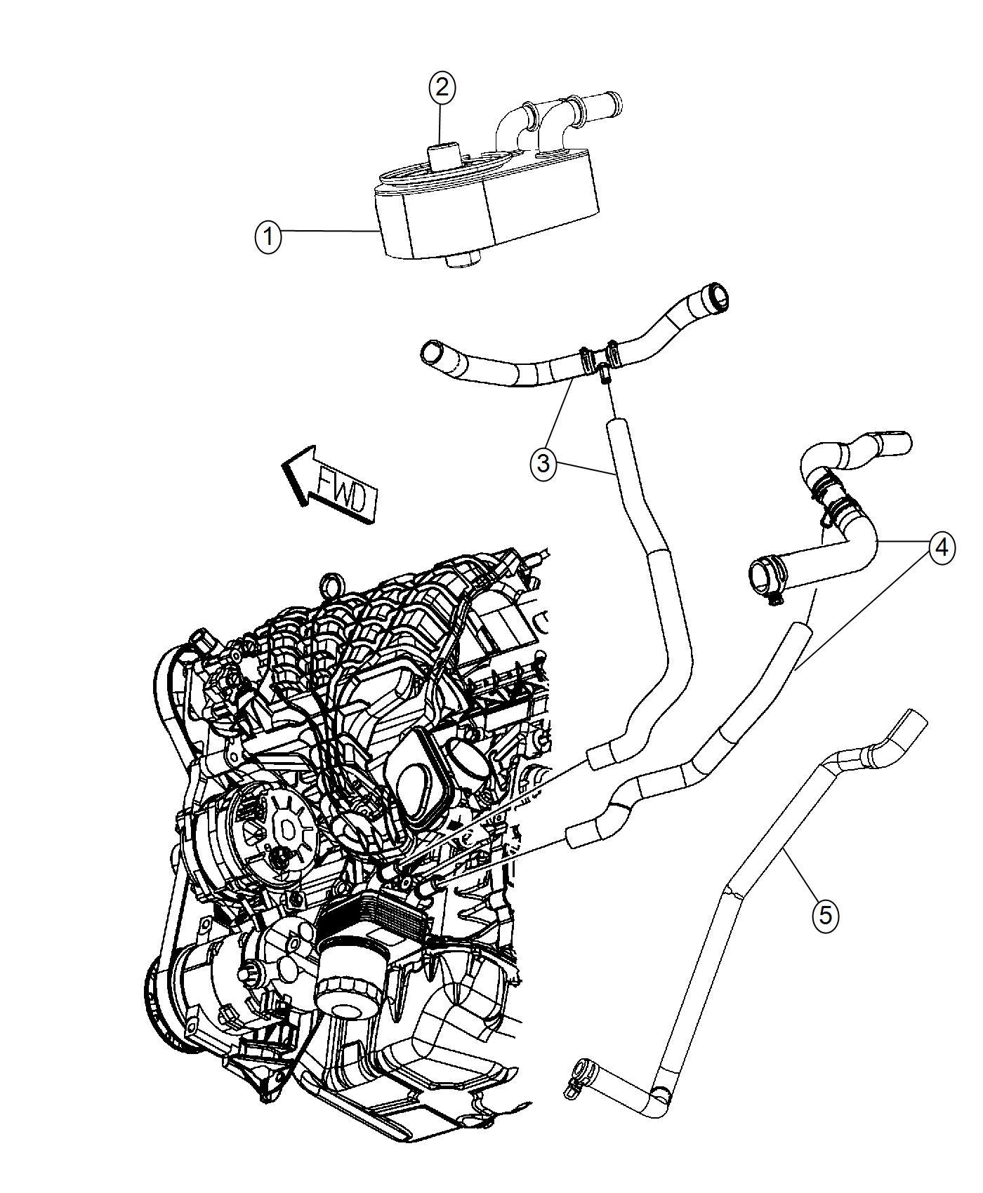 2007 Dodge Caliber Hose. Oil cooler outlet, radiator