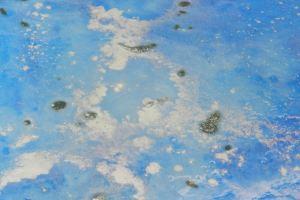 resina-blu-morandi-pitture