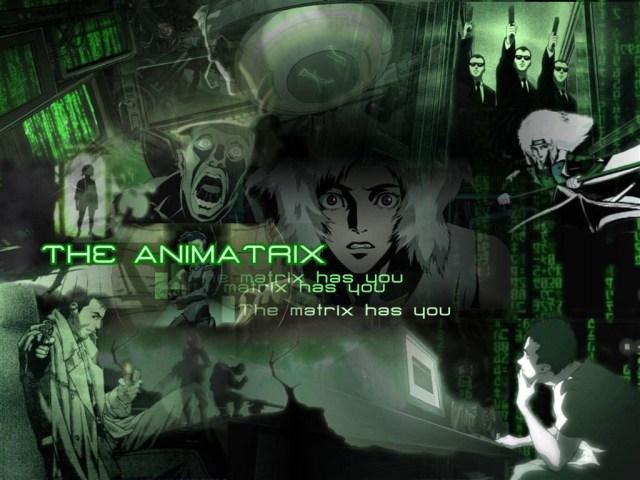 animatrix7