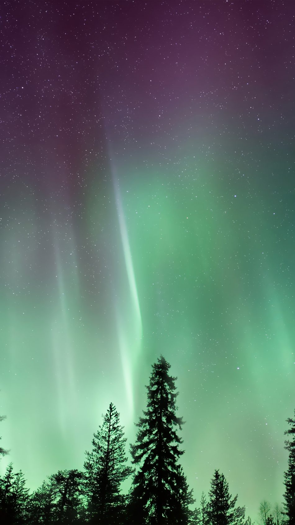 download amazing northern lights