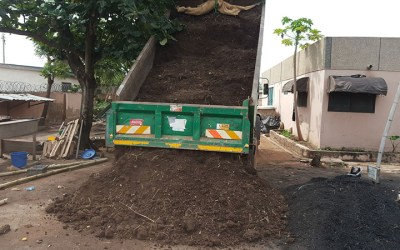Setting up a 20,000 Tree Nursery in Downtown Accra — Ghana West Africa