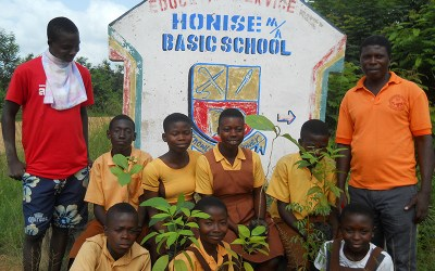 Honise Municipal Assembly Planted 250 Trees in November