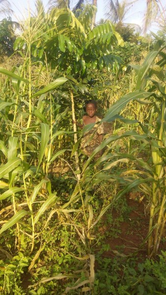 jerry-daughter-among-trees-and-crops